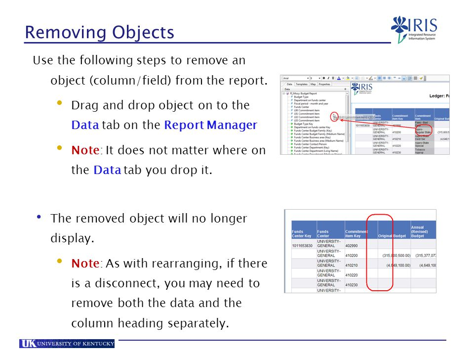 Removing Objects Use the following steps to remove an object (column/field) from the report.