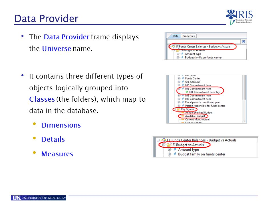 Data Provider The Data Provider frame displays the Universe name.