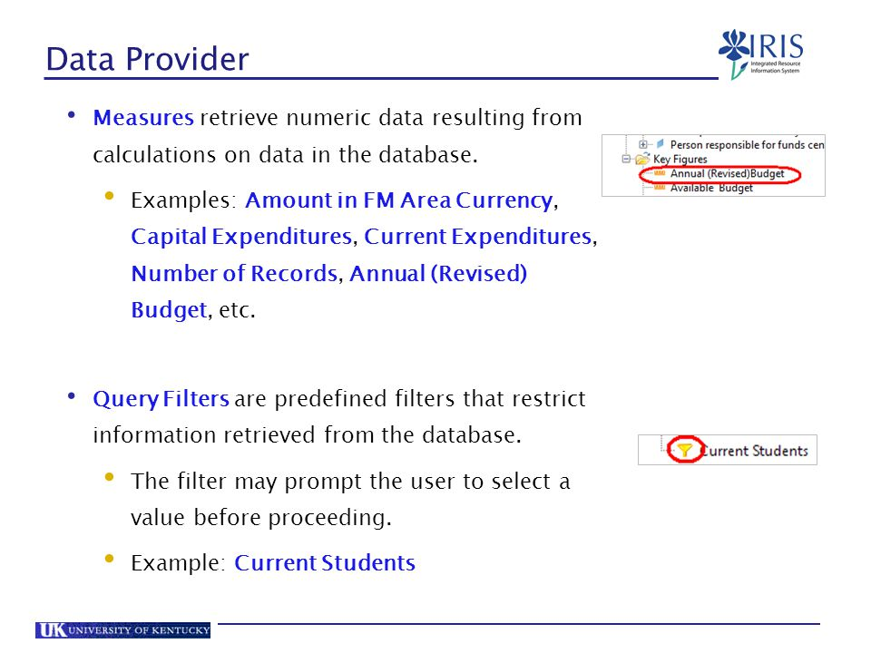 Data Provider Measures retrieve numeric data resulting from calculations on data in the database.