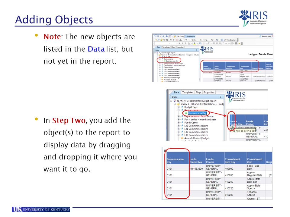 Adding Objects Note: The new objects are listed in the Data list, but not yet in the report.