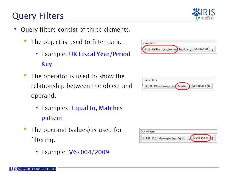 Query Filters Query filters consist of three elements.