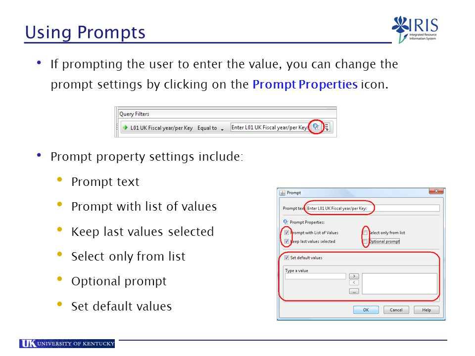 Using Prompts If prompting the user to enter the value, you can change the prompt settings by clicking on the Prompt Properties icon.