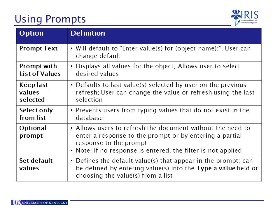 Using Prompts Option Definition Prompt Text