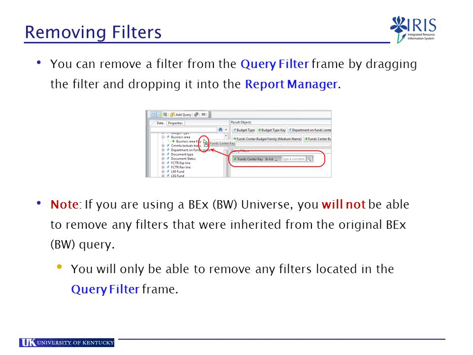 Removing Filters You can remove a filter from the Query Filter frame by dragging the filter and dropping it into the Report Manager.