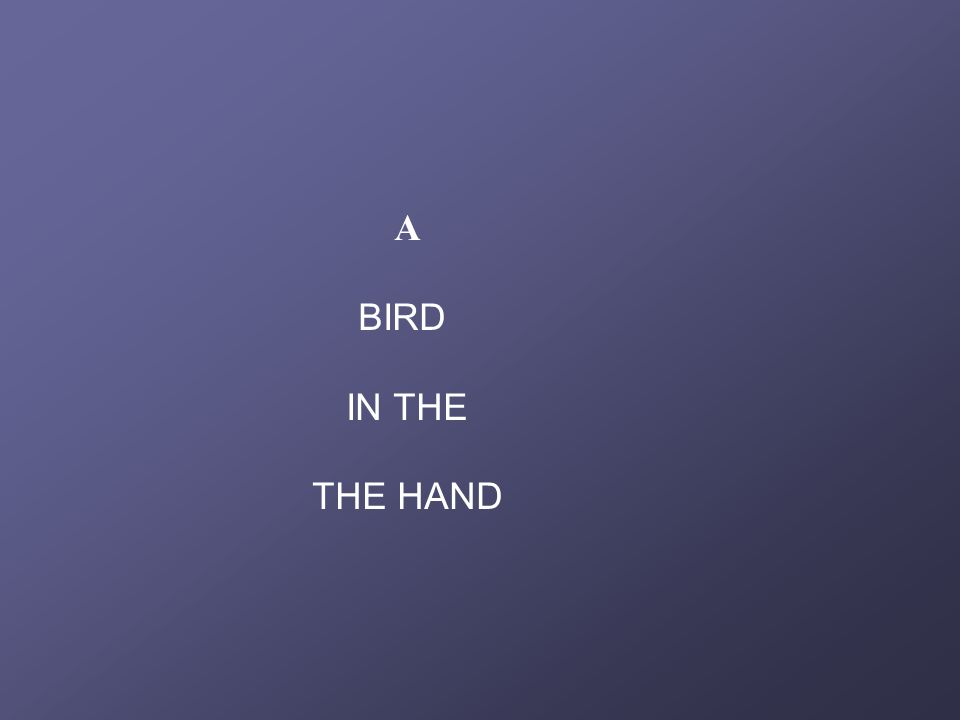 A BIRD IN THE THE HAND