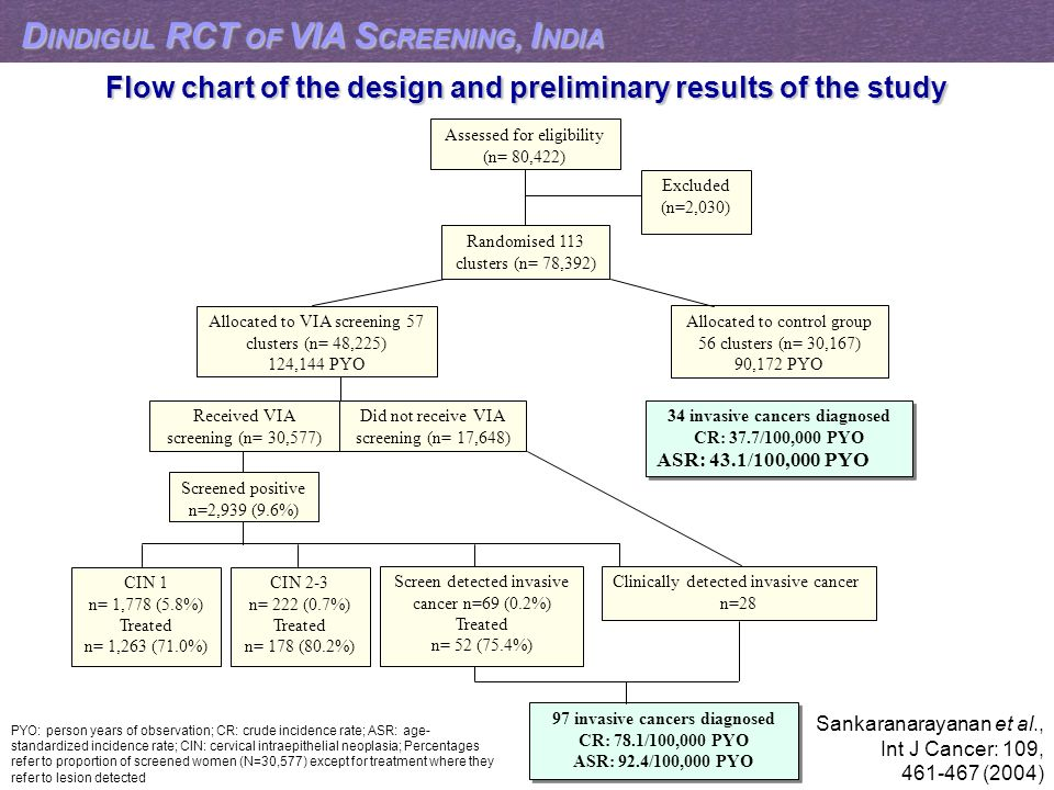 Flow chart of the design and preliminary results of the study