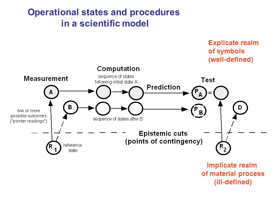 Operational states and procedures in a scientific model
