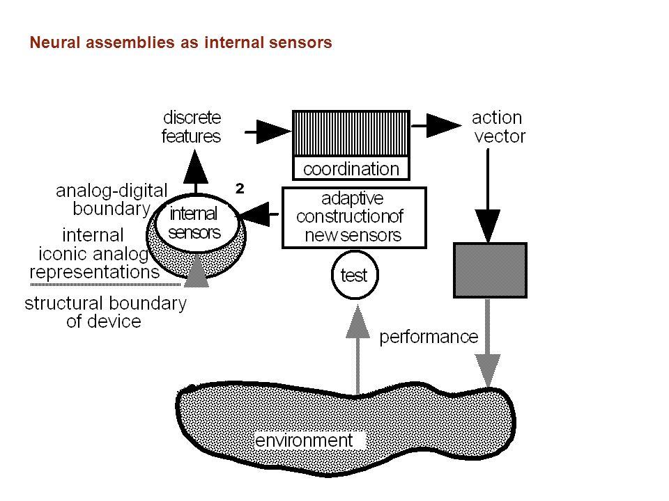 Neural assemblies as internal sensors
