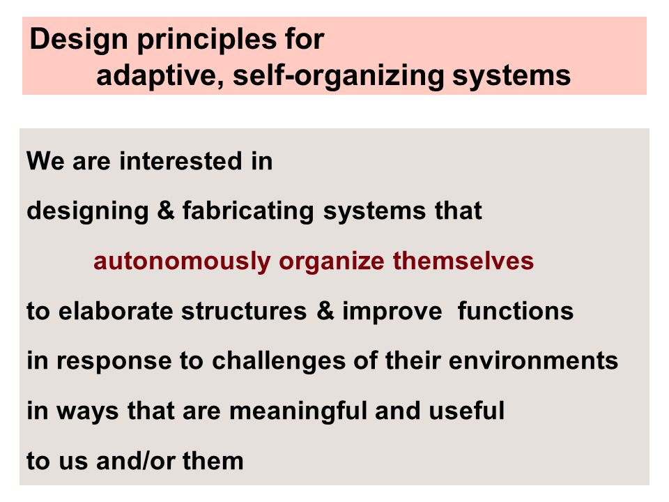 adaptive, self-organizing systems