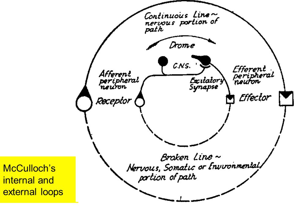 McCulloch's internal and external loops