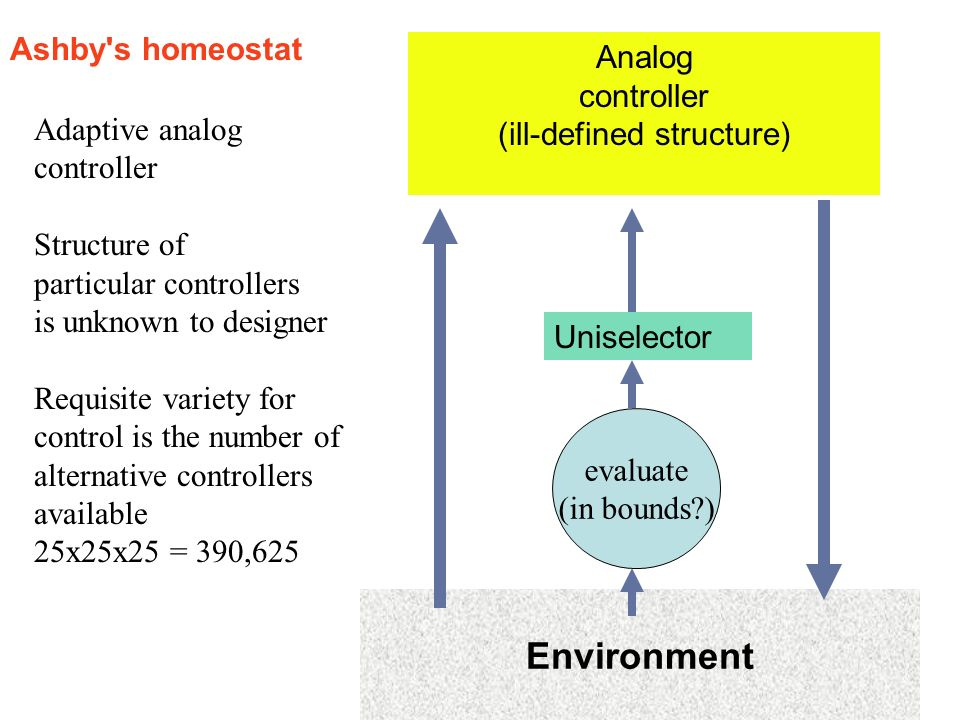 (ill-defined structure)