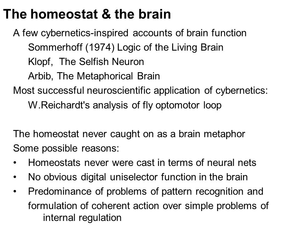 The homeostat & the brain