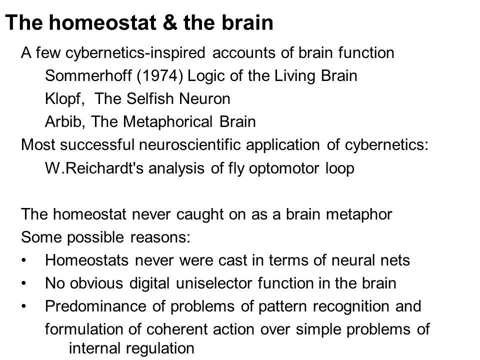 The homeostat & the brain