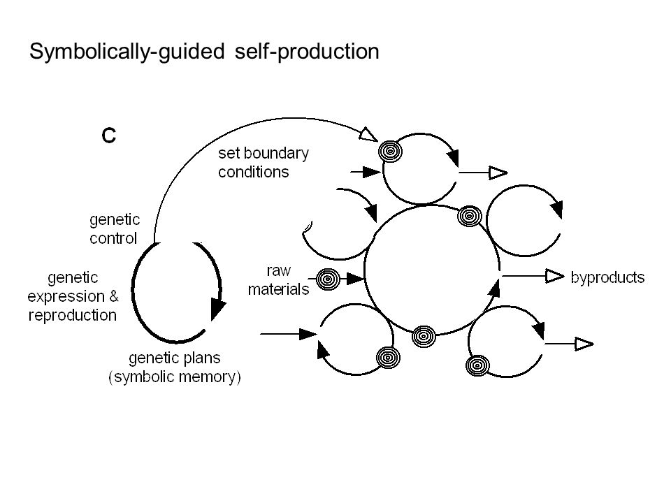 Symbolically-guided self-production