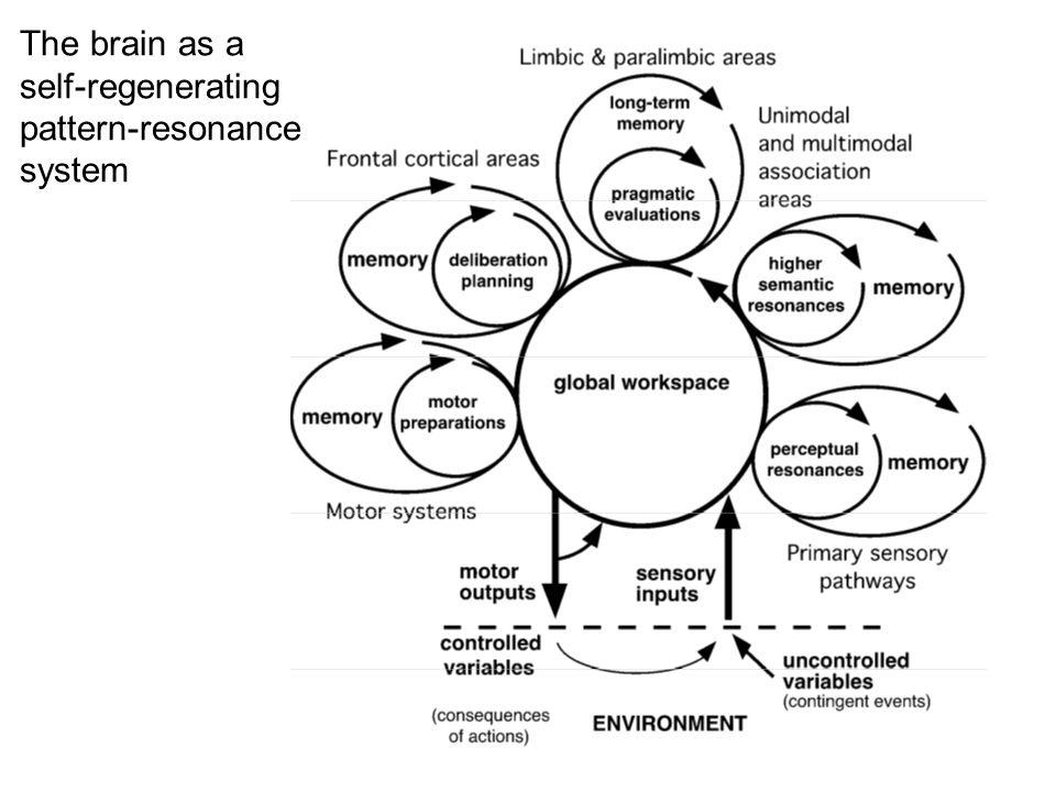 The brain as a self-regenerating pattern-resonance system