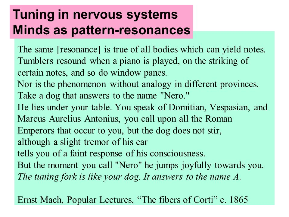 Tuning in nervous systems Minds as pattern-resonances