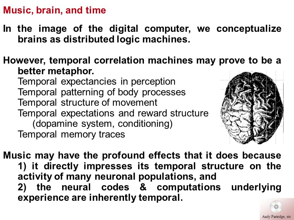 Temporal expectancies in perception