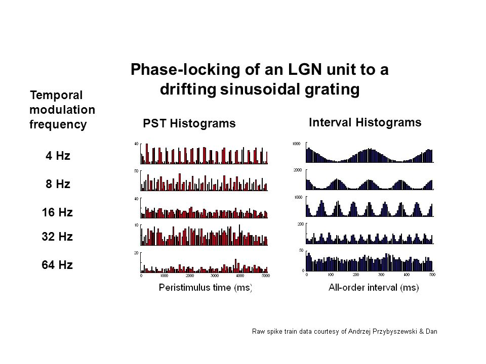 Phase-locking of an LGN unit to a drifting sinusoidal grating