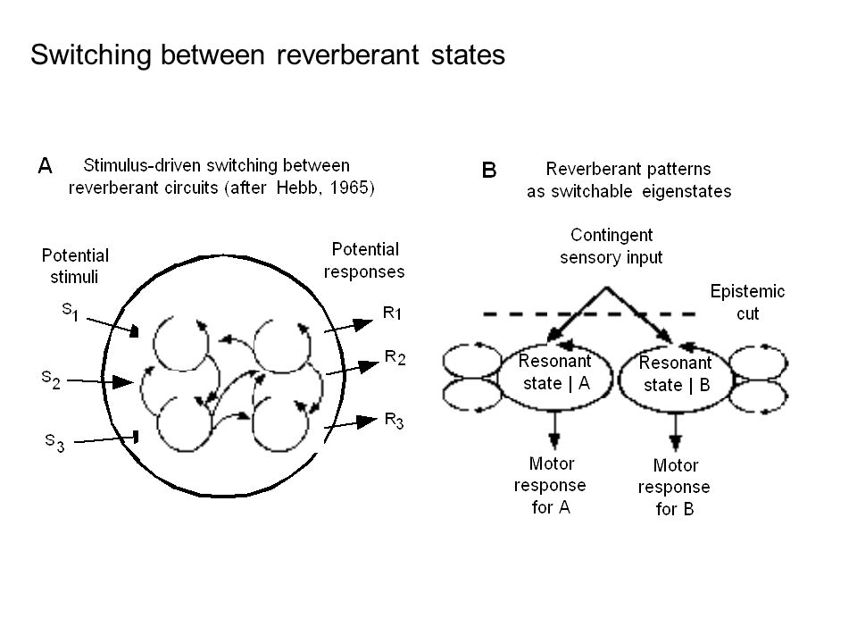 Switching between reverberant states