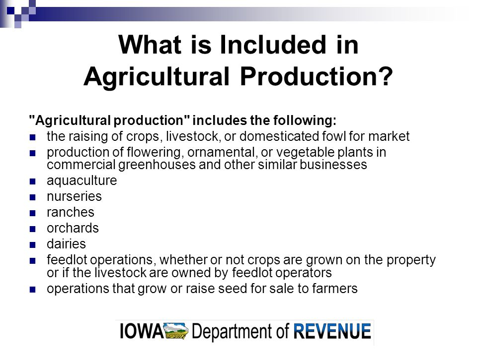What is Included in Agricultural Production