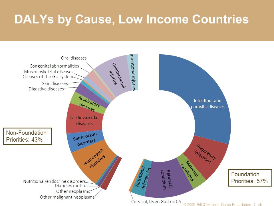 DALYs by Cause, Low Income Countries