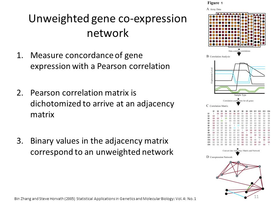 Unweighted gene co-expression network