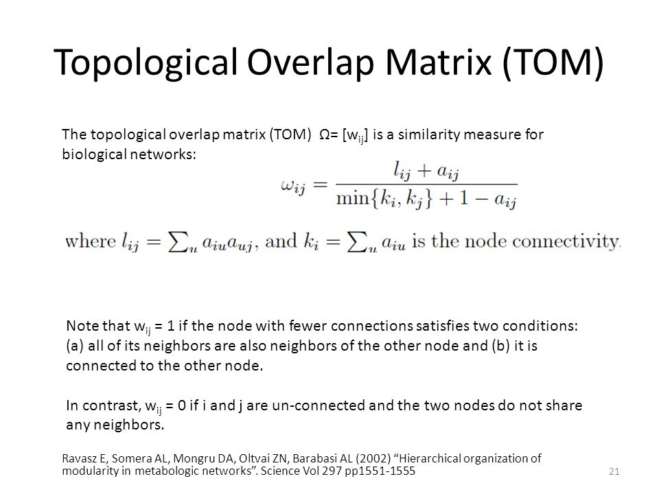 Topological Overlap Matrix (TOM)