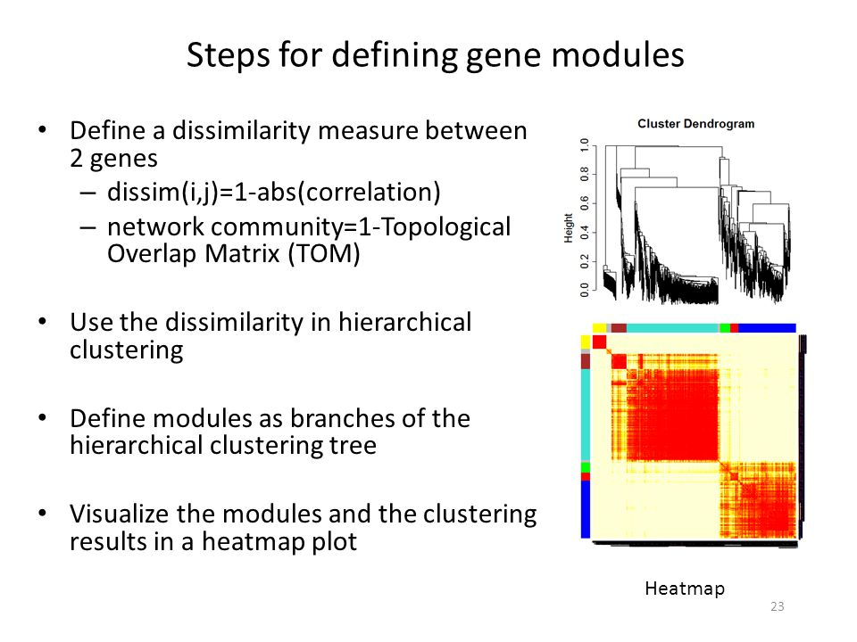 Steps for defining gene modules