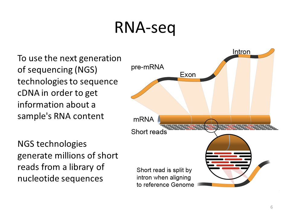 RNA-seq To use the next generation of sequencing (NGS) technologies to sequence cDNA in order to get information about a sample s RNA content.