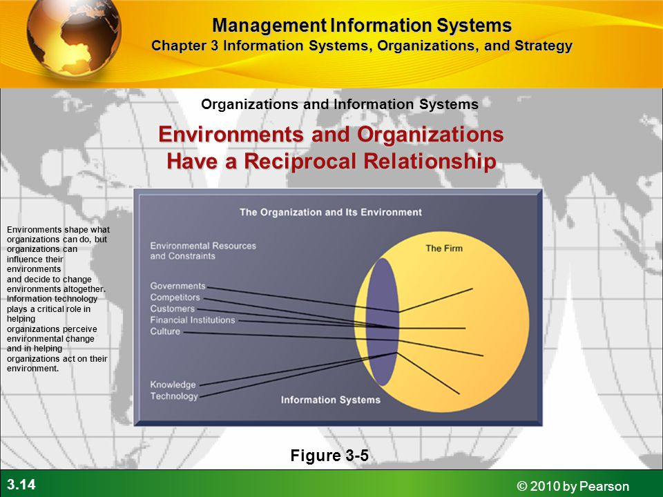 Environments and Organizations Have a Reciprocal Relationship