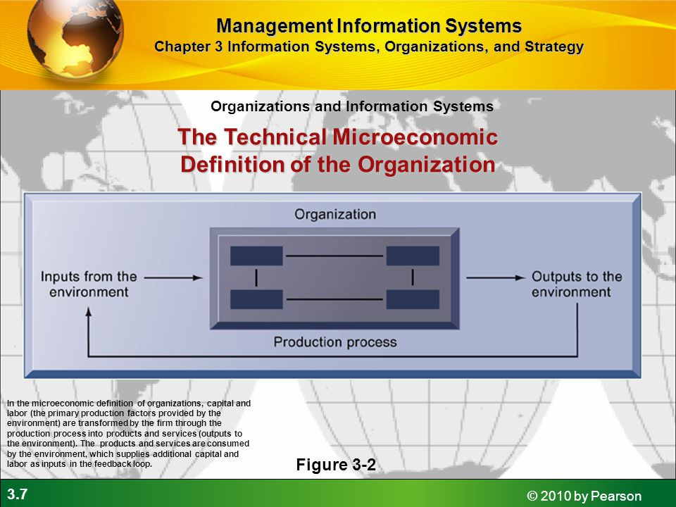 The Technical Microeconomic Definition of the Organization
