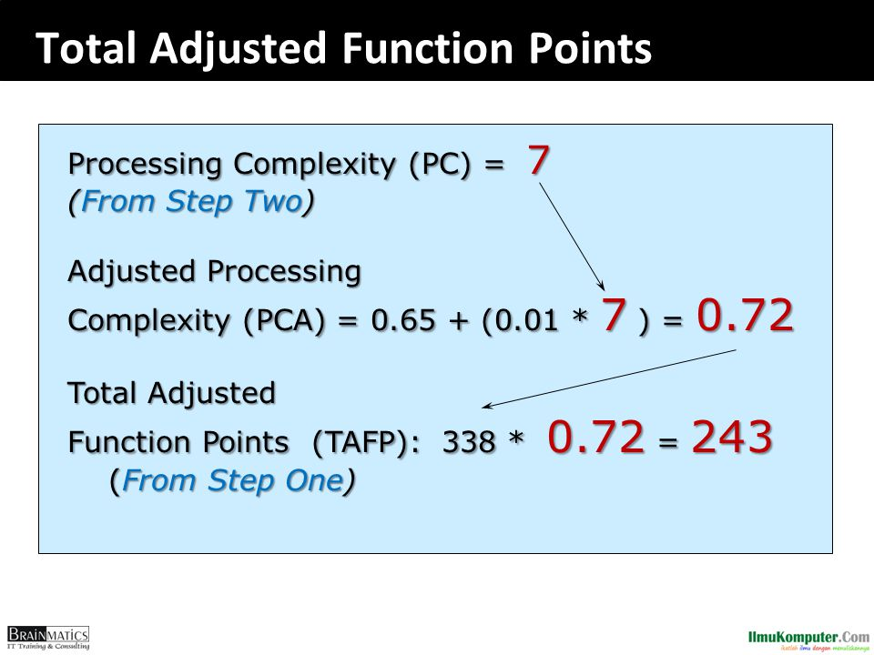 Total Adjusted Function Points