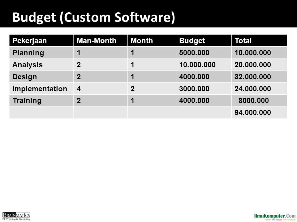 Budget (Custom Software)