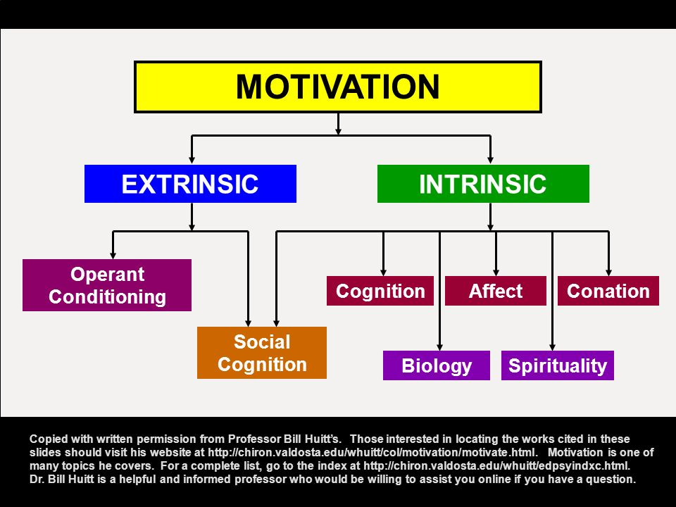 MOTIVATION EXTRINSIC INTRINSIC Operant Conditioning Cognition Affect