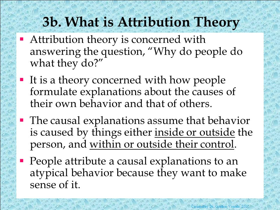 3b. What is Attribution Theory