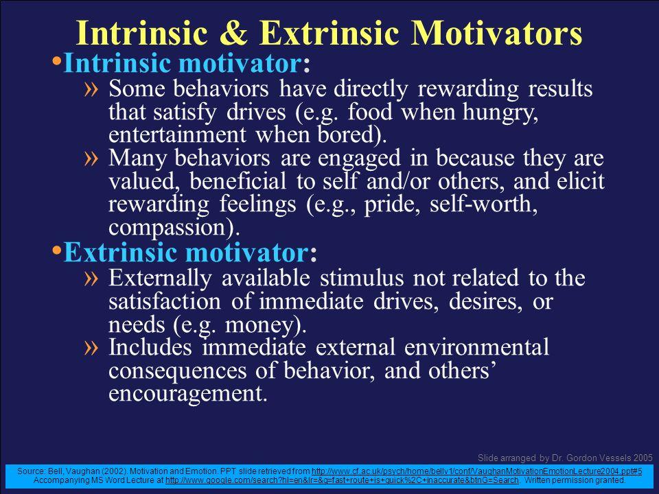 Intrinsic & Extrinsic Motivators