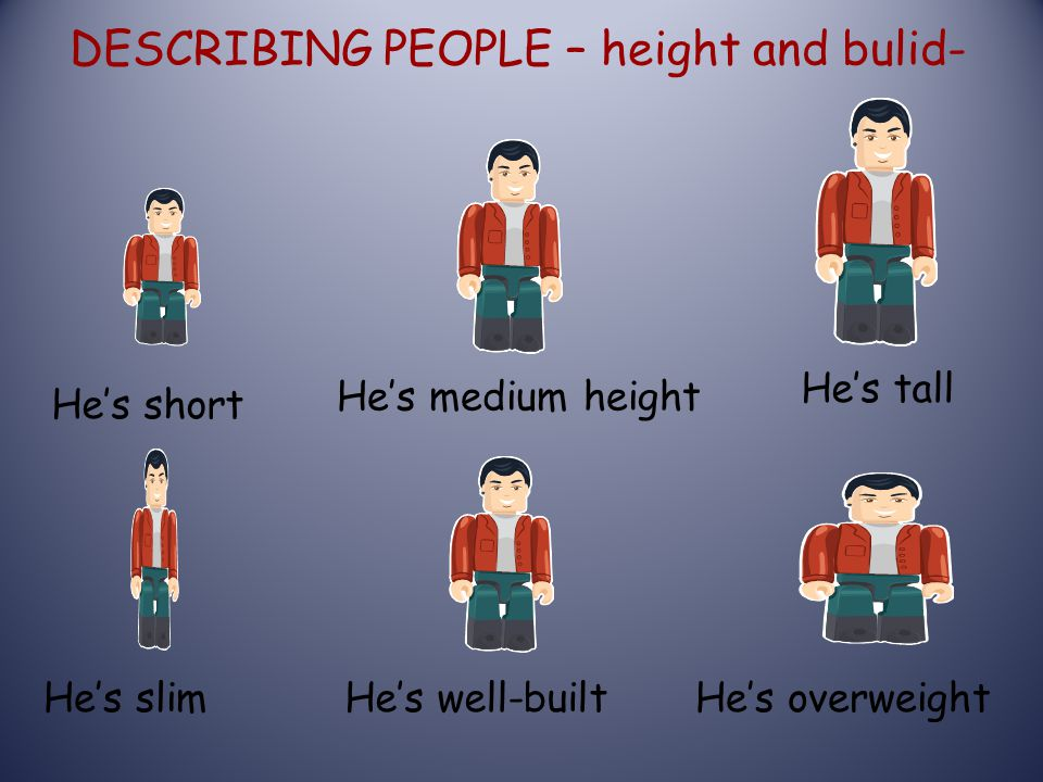 DESCRIBING PEOPLE – height and bulid-
