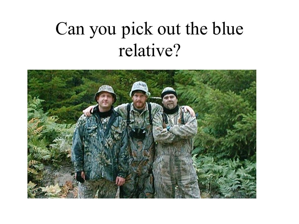 Can you pick out the blue relative