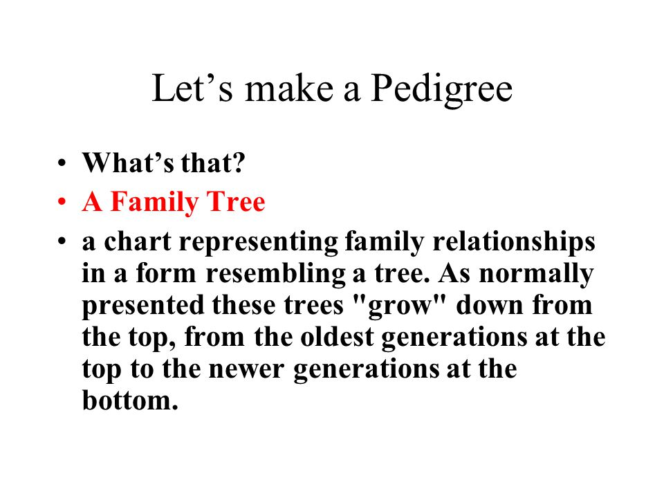 Let's make a Pedigree What's that A Family Tree