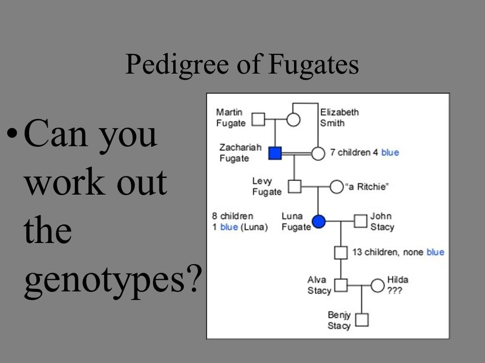 Can you work out the genotypes