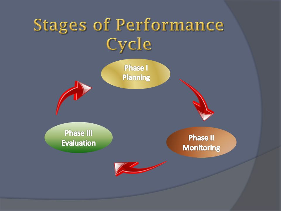 Stages of Performance Cycle