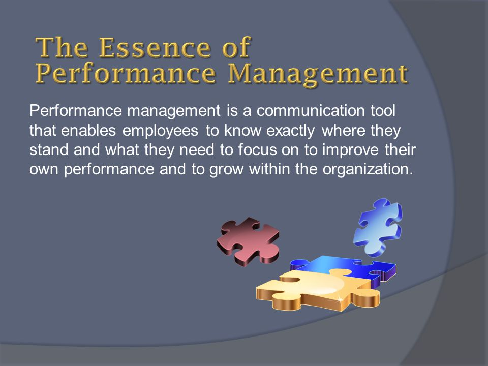 The Essence of Performance Management