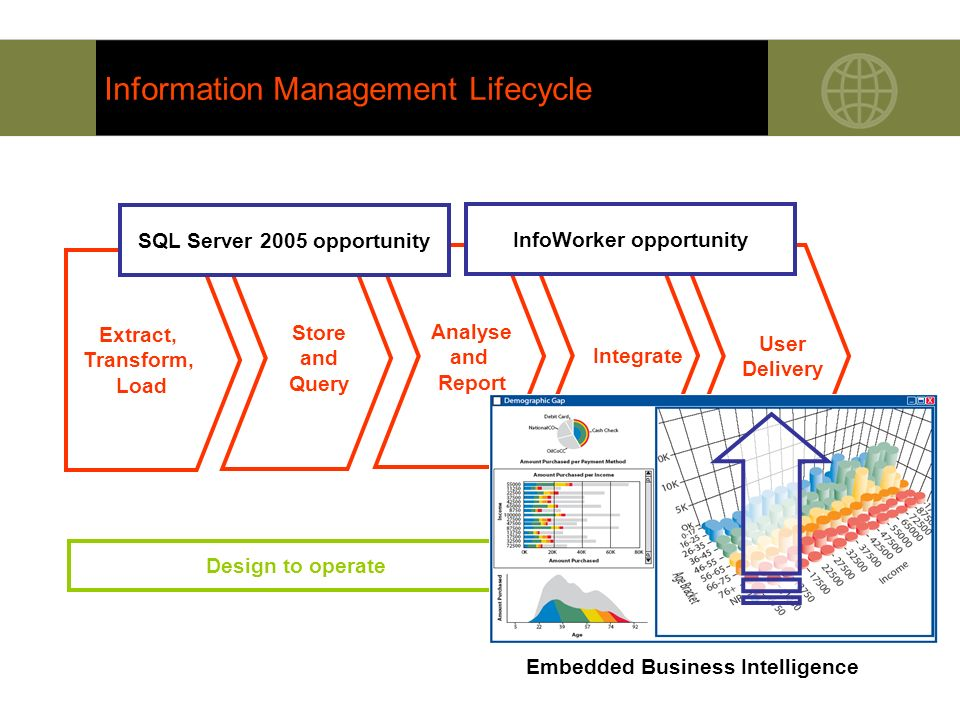 Information Management Lifecycle