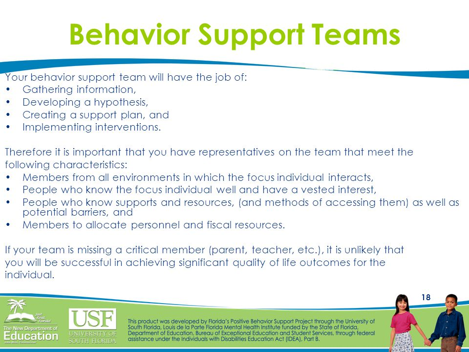 Behavior Support Teams