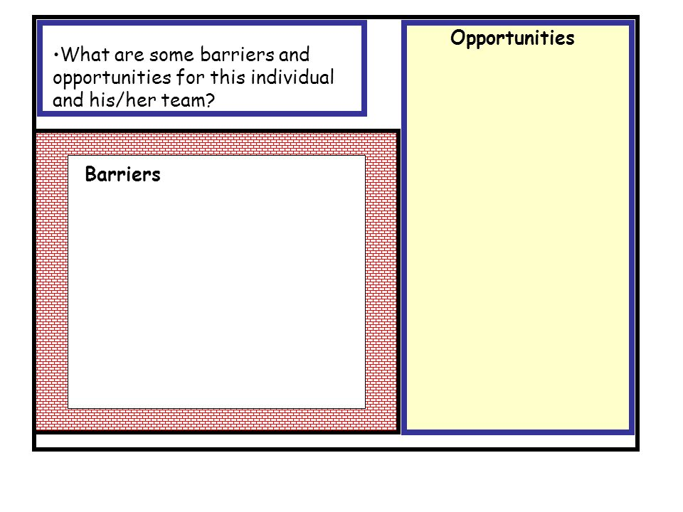 Opportunities What are some barriers and opportunities for this individual and his/her team.