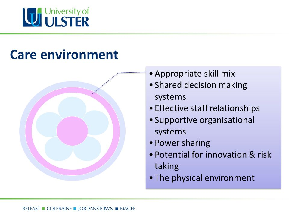 Care environment Appropriate skill mix Shared decision making systems