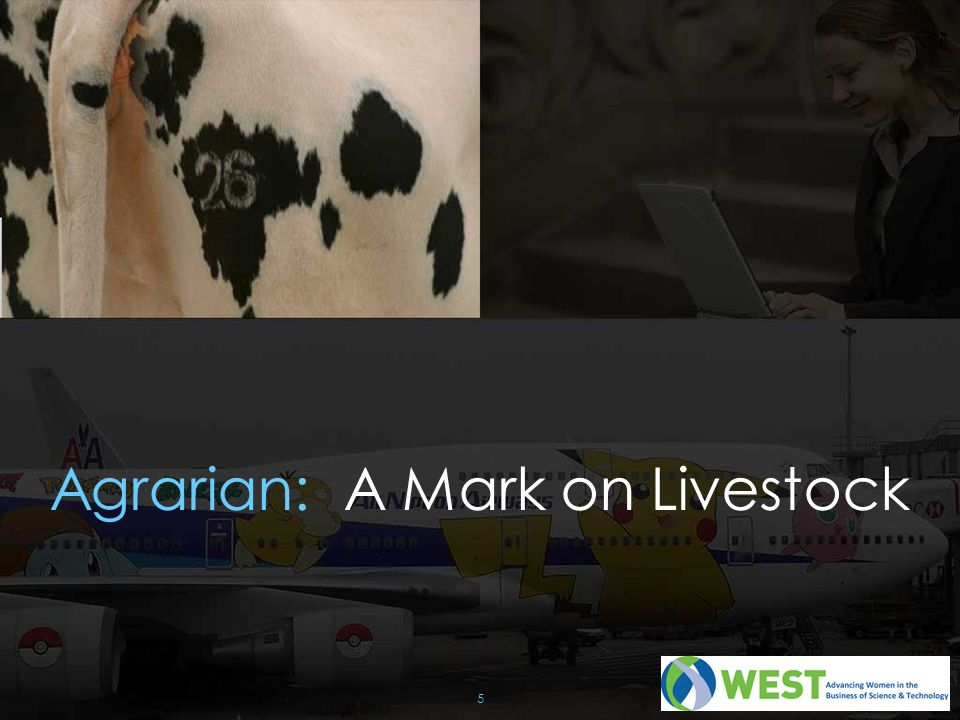 Agrarian: A Mark on Livestock