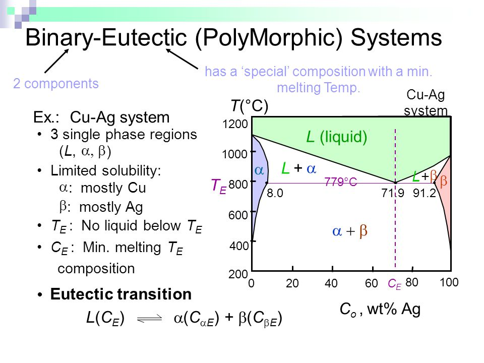 Binary-Eutectic (PolyMorphic) Systems