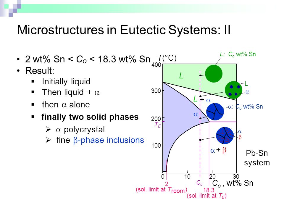 Microstructures in Eutectic Systems: II