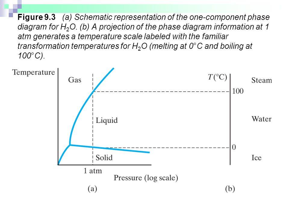 Figure 9.3 (a) Schematic representation of the one-component phase diagram for H2O.